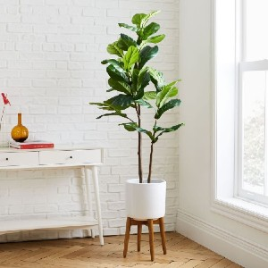 West Elm Faux Fiddle Leaf Fig Tree - Best Artificial Plants for Indoors: Solid Wood Legs in Walnut
