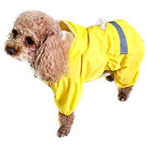 Alfie Willis Rainy Days Waterproof Raincoat - Best Raincoats for Corgis: Protected from head to legs
