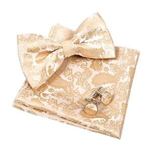 Alizeal Mens Classic Paisley Bow Tie - Best Bow Ties on Amazon: Best matches to your suit