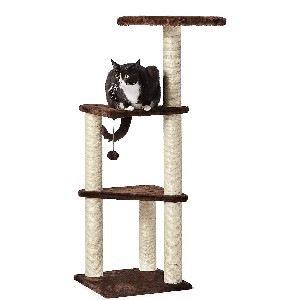 Amazon Basics Cat Tree with Platform - Best Cat Tree for Apartment: Affordable Cat Tree
