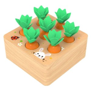 Ancaixin Wooden Toys for 1 Year Old Boys and Girls  - Best Wooden Toys for Toddlers: Gardening without mess