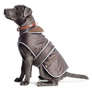 Ancol Muddy Paws Stormguard Dog Coat - Best Raincoats for Big Dogs: Looks smart, less dirty