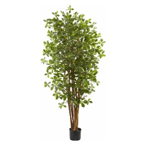 Charlton Home® Olive Tree - Best Artificial Plants for Indoors: Made Simple and a Beautiful Accent for Any Décor