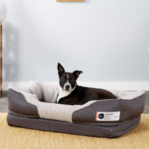 BarksBar Snuggly Sleeper Orthopedic Bolster Dog Bed w/Removable Cover - Best Dog Beds for Large Dogs: Bed with Cotton-Padded Rim