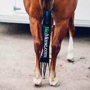 BioMane Tailbag - Best Tail Bag for Horse: One of the most reliable