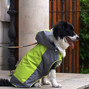 Bolbove Dog Hooded Raincoat - Best Raincoats for Dogs: Raincoat with 2 Layers Design
