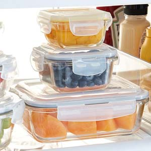 Femora Borosilicate Glass Square Food Storage - Best Food Storage Container: Withstand any temperatures