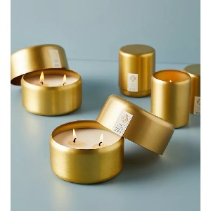 Candlefish Molded Metal Two-Wick Candle - Best Cheap Scented Candles: Refreshing Scent