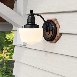 Charlton Home® Michaels Textured Black Colorful Glass Outdoor Barn Light - Best Outdoor Barn Lights: Dimmable Barn Light