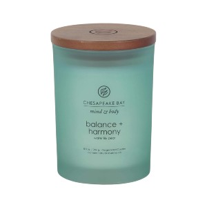 Chesapeake Bay Candle Scented Candle - Best Scented Candles on Amazon: Fresh Scent