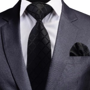 Classy Men Collection Classy Men Black Carbon Silk Necktie - Best Ties for Young Professionals:  Be the classiest man