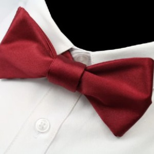 Classy Men Collection Classy Men Wine Red Silk Self-Tie Bow Tie - Best Ties for White Shirts:  A statement of confidence