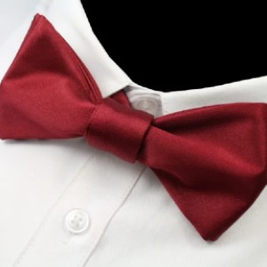 Classy Men Collection Classy Men Wine Red Silk Self-Tie Bow Tie - Best Bow Ties for Weddings: Crown your wedding