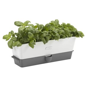 Cole & Mason Self-Watering Potted Herb Keeper - Best Self-Watering Planters: Keep your herbs fresh