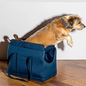 Wild One Commuter Carrier - Best Pet Carriers for Flying: Minimalist carrier
