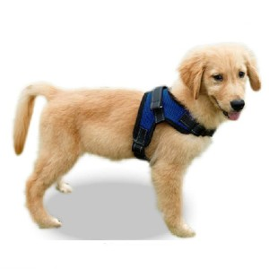 Copatchy No Pull Reflective Adjustable Dog Harness with Handle - Best Dog Harness for Walking: Durable Material