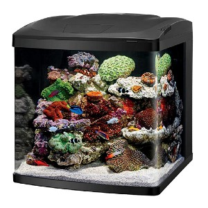 Coralife LED Biocube Aquarium LED  - Best Tank for a Turtle: Sleek and modern design