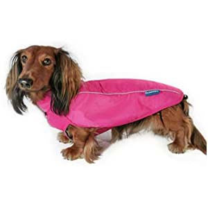 DJANGO City Slicker All-Weather Dog Jacket - Best Raincoats for Corgis: Minimalist and cover up well