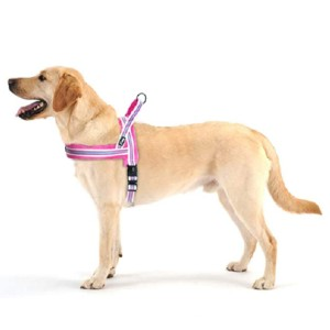 Didog Soft Flannel Padded Dog Vest Harness - Best Dog Harness for Walking: Soft Pad on Front and Neck