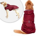 10 Recommendations: Best Raincoats for Dogs (Oct  2020): Raincoat with Vest Design