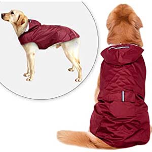 Didog Reflective Dog Raincoat - Best Raincoats for Big Dogs: Last longer with spacious design