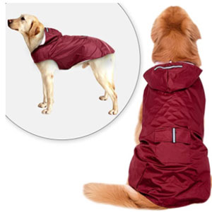 Didog Store Reflective Dog Raincoat - Best Raincoats for Dogs: Raincoat with Vest Design