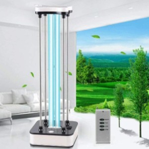 Dsane UV Light Sanitizer - Best UV-C Germicidal Lamp: Suitable for Room Area about 40 ㎡