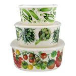 10 Recommendations: Best Food Storage Container (Oct  2020): Pretty yet practical