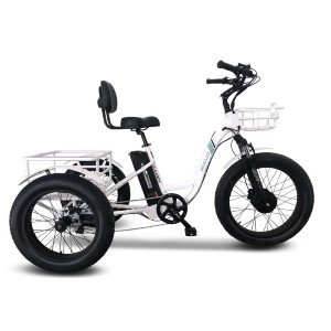 Emojo Caddy Pro Fat Tire 500W 48V Electric Tricycle - Best Electric Bike for Seniors: Three Wheels for Good Stability