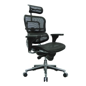 Ergohuman Ergohuman High Back Swivel Chair with Headrest - Best Office Chair for Sciatica: Great Back Support