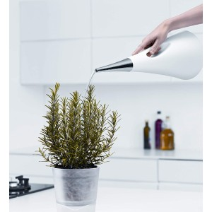 Eva Solo AquaStar Watering Can - Best Watering Can for Indoor Plants: Danish Designed Around Aesthetics