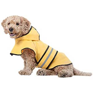 Ethical Pet Fashion Pet Rainy Days Slicker Yellow Raincoat - Best Raincoats for Corgis: Functional without going out of style