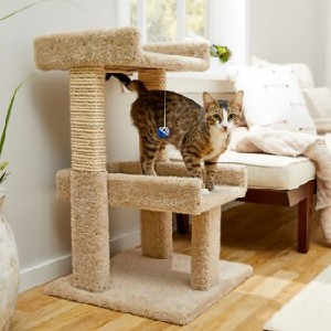 Frisco Real Carpet Wooden Cat Tree with Toy - Best Cat Tree for Apartment: Durable Cat Tree