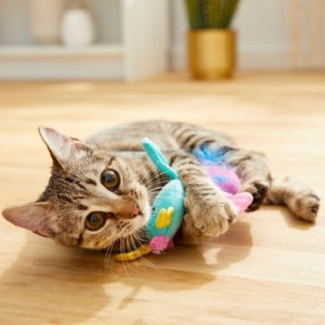 Frisco Mythical Mates Dragon Crinkle Cat Toy with Catnip - Best Cat Toys for Indoor Cats: Cute Dragon Toy