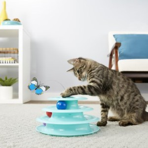 Frisco Cat Tracks Butterfly Cat Toy - Best Cat Toys Interactive: Excellent Cat Tracks