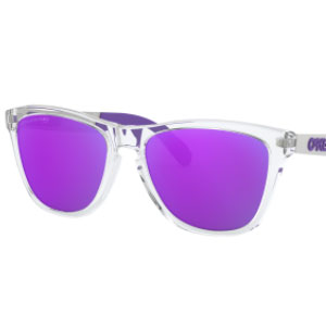 Oakley Frogskins™ Mix - Best Sunglasses Made in USA: Radiant Purple Sunglasses