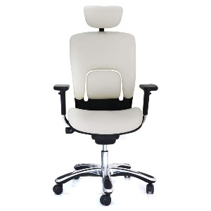 GM Seating Ergolux Genuine Leather Executive Hi Swivel Chair - Best Office Chair with Headrest: Lumbar Support System