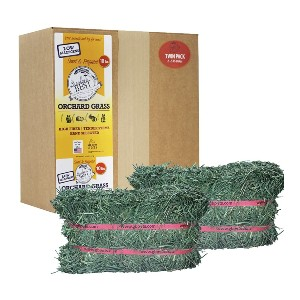 Grandpa's Best Orchard Grass Bale - Best Hay for Baby Rabbit: Soft Green Leafy Hay