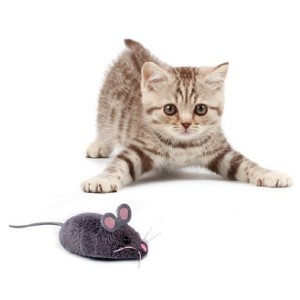 Hexbug Mouse Robotic Cat Toy - Best Cat Toys Interactive: Realistic Looking Robotic Mouse