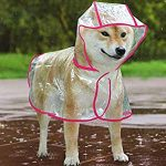 10 Recommendations: Best Raincoats for Corgis (Oct  2020): Easy to wear