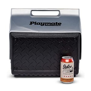 Igloo The Boss Playmate Cooler  - Best Lunch Cooler for Work: It fits taller drinks