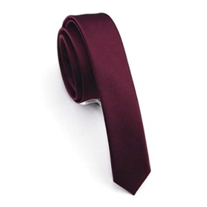 JEMYGINS Solid Color Skinny Tie - Best Ties for Young Professionals: Best for interviews