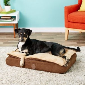 K&H Pet Products Feather-Top Orthopedic Pillow Dog Bed, Chocolate, Small - Best Dog Beds for Small Dogs: Orthopedic Bed