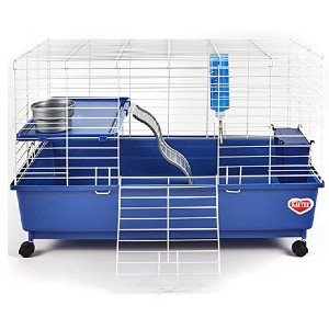 Kaytee My First Home 2-level Pet Habitat  - Best Cage for Guinea Pigs: A curved safety ramp