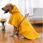 10 Recommendations: Best Raincoats for Dogs (Oct  2020): Raincoat with Pocket on The Back