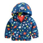 10 Recommendations: Best Raincoats for Toddlers (Oct  2020): Enduring color and pattern