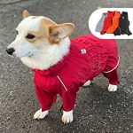 10 Recommendations: Best Raincoats for Corgis (Oct  2020): Full protection with vivid color