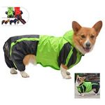 10 Recommendations: Best Raincoats for Corgis (Oct  2020): Keeps your dog dry and clean