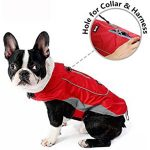 10 Recommendations: Best Raincoats for Corgis (Oct  2020): Your dog won't take it off
