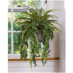 Petals Ferns Silk Foliage - Best Artificial Hanging Plants: Metal Chain Hanger Included